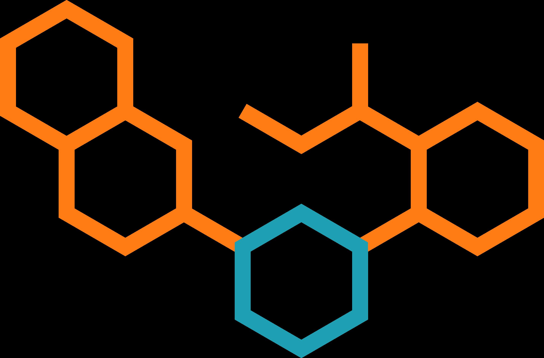 Logo FIRST Network